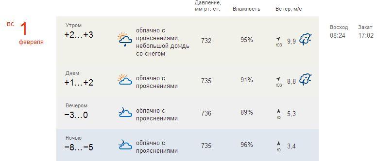 погода Московской лыжни 1 февраля
